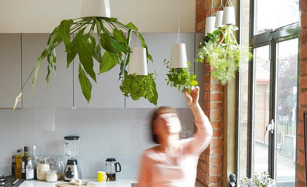 pflanzen in der h ngetasche an der wand woolly pocket home design forum f r wohnideen und. Black Bedroom Furniture Sets. Home Design Ideas